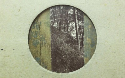 Strands & Chequerboard single 'Leaf to Light'